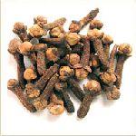 Clove Bud - Syzygium aromaticum 丁香苞 有機花水純露